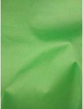 Gabardina Verde v1